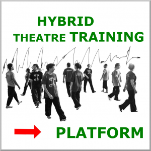 link hybrid-theatre-training.org